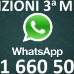 WhatsApp 351 660 5008